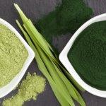 Spirulina e Chlorella : conheça os benefícios desses superalimentos