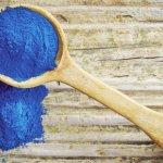 Spirulina azul: o único corante natural azul do mundo chega ao Brasil
