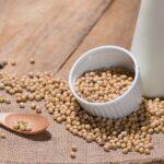 Proteína de soja: saiba como ela pode ser utilizada na alimentação